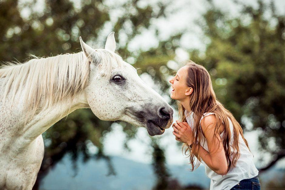 Araberpower • Pferdeshooting Stuttgart
